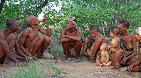 les peuples racine et la nature